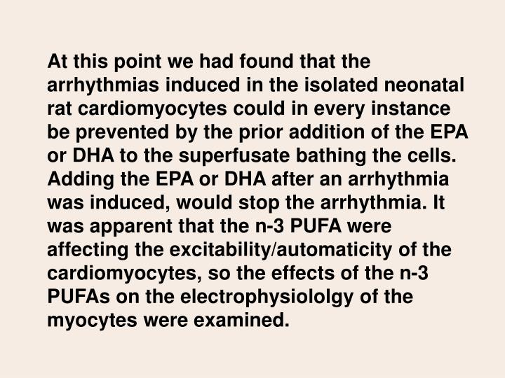 At this point we had found that the arrhythmias induced in the isolated neonatal rat cardiomyocytes could in every instance be prevented by the prior addition of the EPA or DHA to the superfusate bathing the cells. Adding the EPA or DHA after an arrhythmia was induced, would stop the arrhythmia. It was apparent that the n-3 PUFA were affecting the excitability/automaticity of the cardiomyocytes, so the effects of the n-3 PUFAs on the electrophysiololgy of the myocytes were examined.
