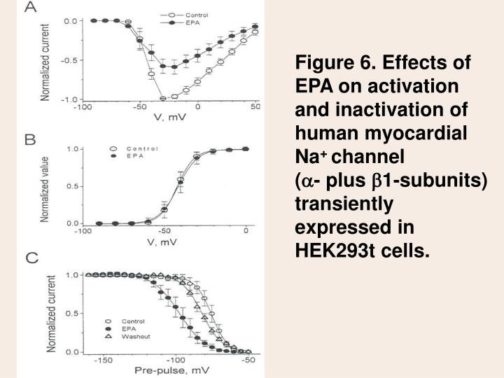 Figure 6. Effects of EPA on activation and inactivation of human myocardial Na