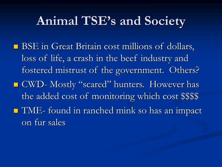 Animal TSE's and Society