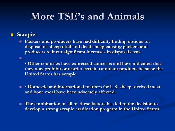 More TSE's and Animals