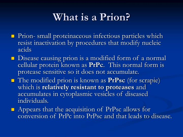 What is a prion