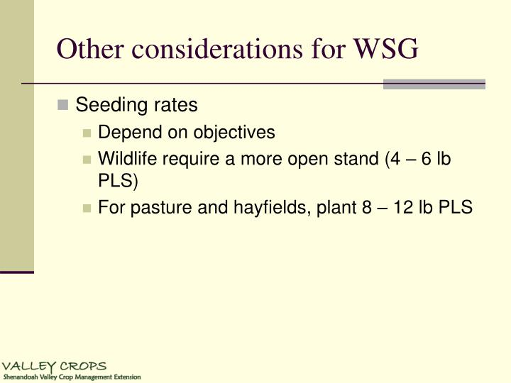 Other considerations for WSG