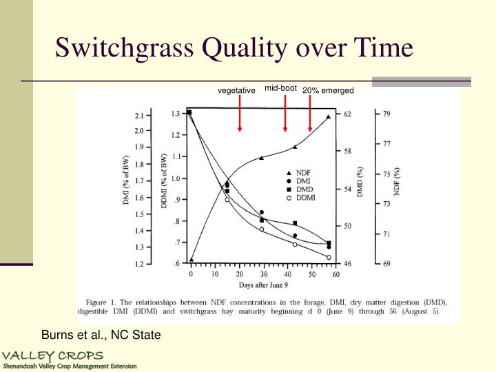 Switchgrass Quality over Time