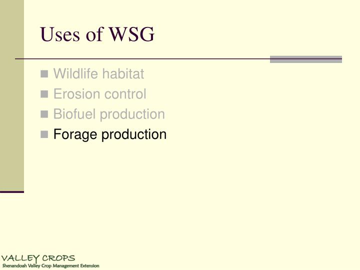 Uses of WSG