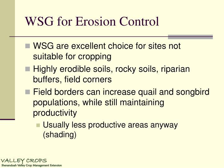 WSG for Erosion Control
