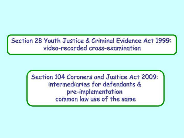 Section 28 Youth Justice & Criminal Evidence Act 1999: