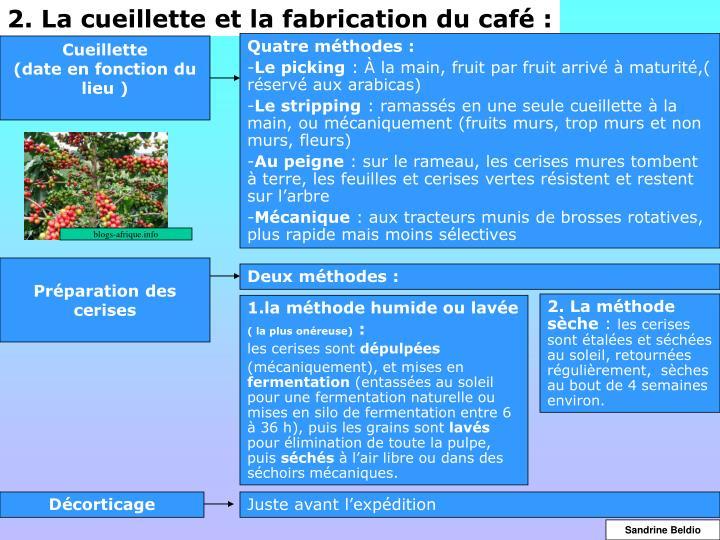 2. La cueillette et la fabrication du café :