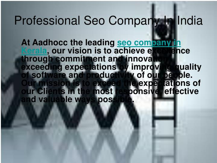 Professional seo company in india