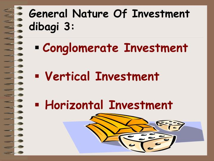 General Nature Of Investment