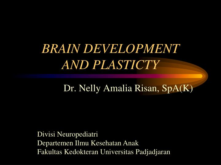 Brain development and plasticty
