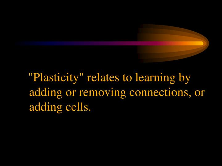 """Plasticity"" relates to learning by adding or removing connections, or adding cells."