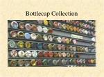 bottlecap collection
