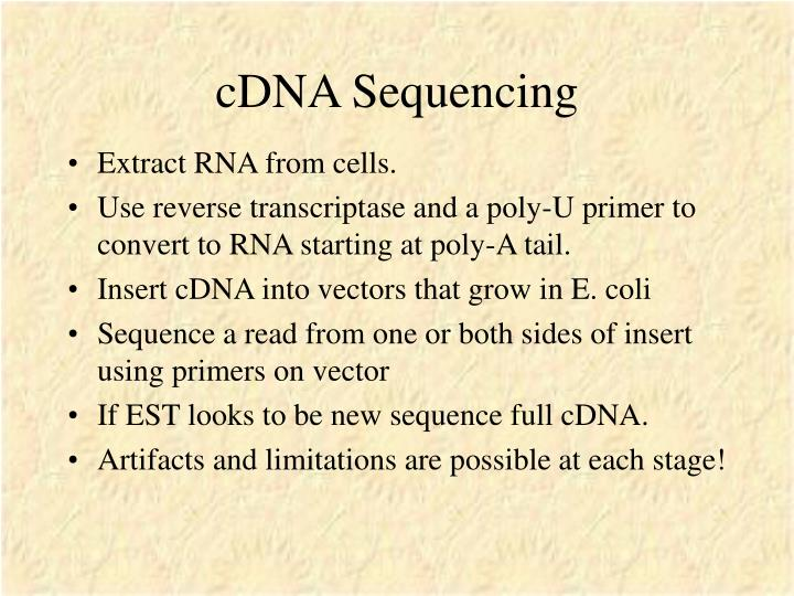 cDNA Sequencing