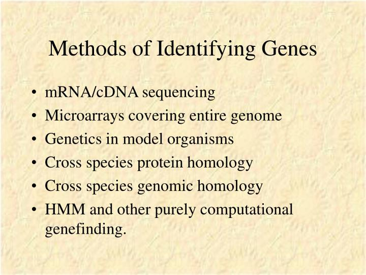 Methods of Identifying Genes