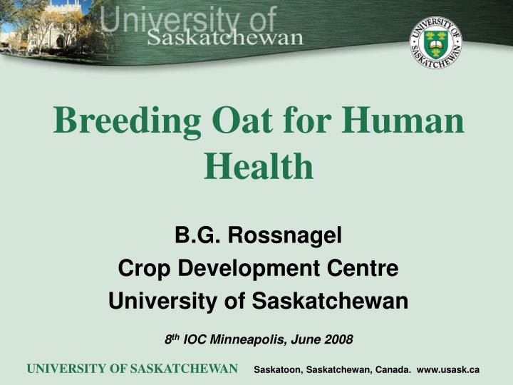 Breeding oat for human health