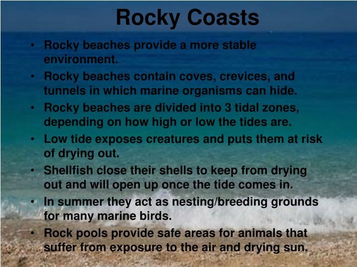 Rocky Coasts