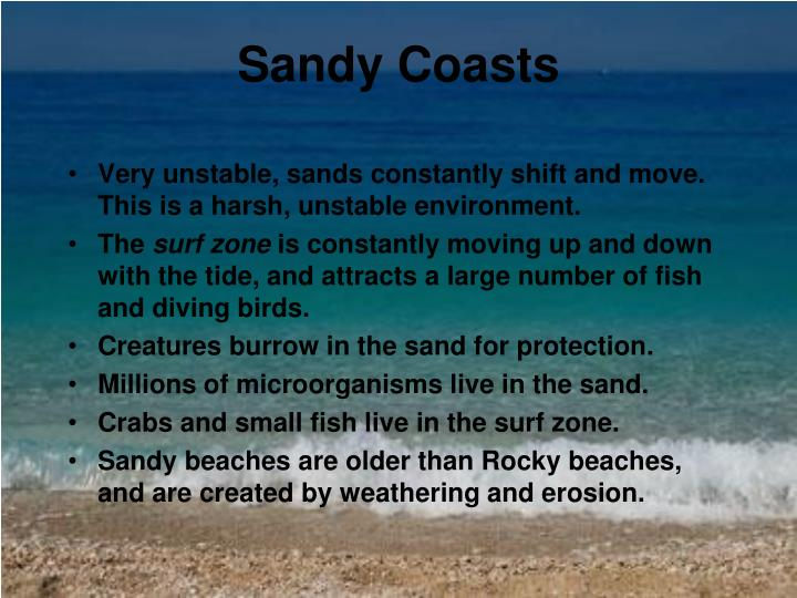 Sandy coasts