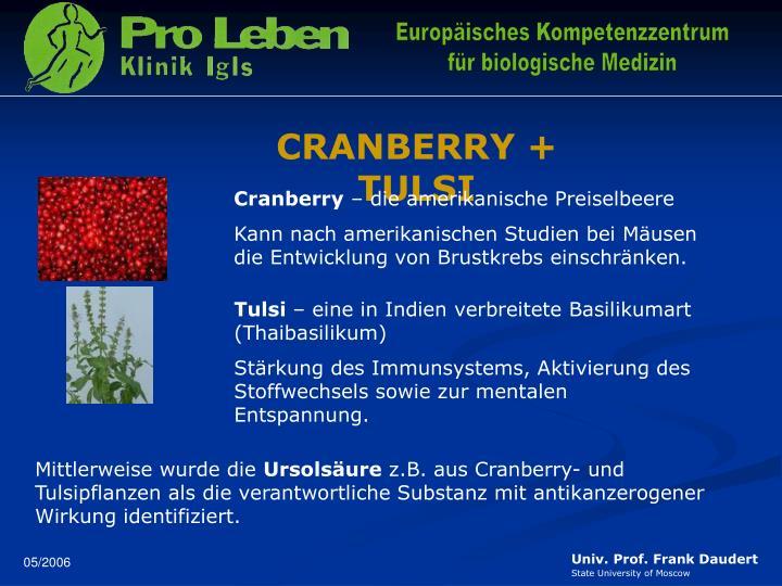 CRANBERRY + TULSI