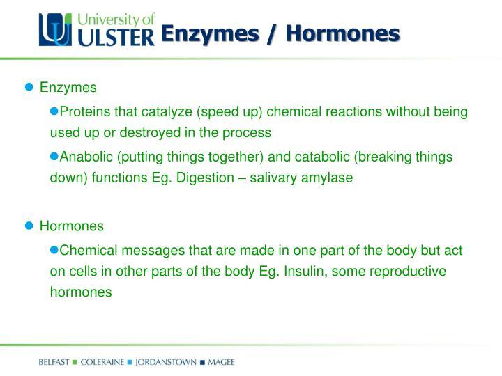 Enzymes / Hormones