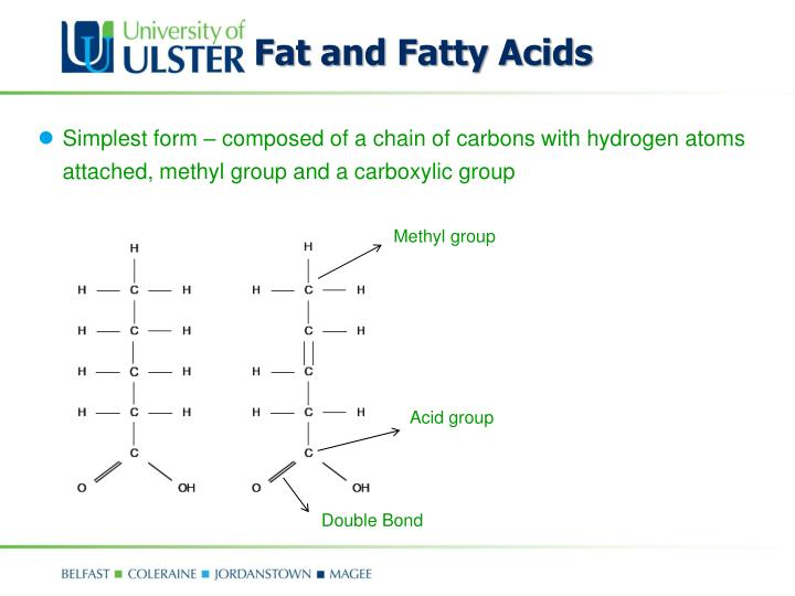 Fat and Fatty Acids