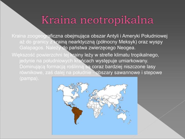 Kraina zoogeograficzna obejmujca obszar Antyli i Ameryki Poudniowej a do granicy z krain nearktyczn (pnocny Meksyk) oraz wyspy Galapagos. Naley do pastwa zwierzcego Neogea.