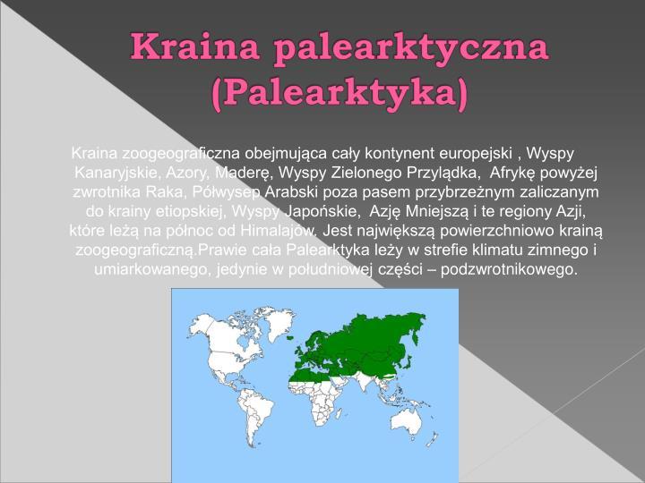 Kraina zoogeograficzna obejmujca cay kontynent europejski , Wyspy Kanaryjskie, Azory, Mader, Wyspy Zielonego Przyldka,  Afryk powyej zwrotnika Raka, Pwysep Arabski poza pasem przybrzenym zaliczanym do krainy etiopskiej, Wyspy Japoskie,  Azj Mniejsz i te regiony Azji, ktre le na pnoc od Himalajw. Jest najwiksz powierzchniowo krain zoogeograficzn.Prawie caa Palearktyka ley w strefie klimatu zimnego i umiarkowanego, jedynie w poudniowej czci  podzwrotnikowego.