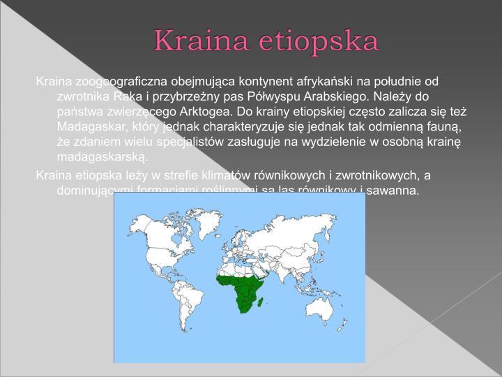 Kraina zoogeograficzna obejmujca kontynent afrykaski na poudnie od zwrotnika Raka i przybrzeny pas Pwyspu Arabskiego. Naley do pastwa zwierzcego Arktogea. Do krainy etiopskiej czsto zalicza si te Madagaskar, ktry jednak charakteryzuje si jednak tak odmienn faun, e zdaniem wielu specjalistw zasuguje na wydzielenie w osobn krain madagaskarsk.