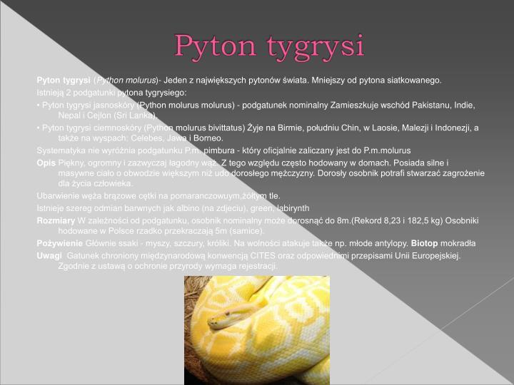 Pyton tygrysi