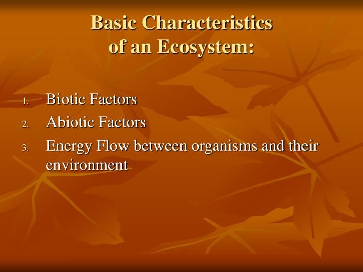 the basic characteristics of frogs Some generation x characteristics are fairly common in the workplace generation x is individualistic generation x came of age in an era of two-income families, rising divorce rates, and a faltering economy, although they would eventually enter the workforce during the healthier economic years of the clinton administration.