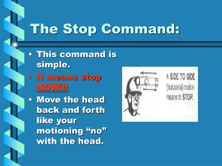 The Stop Command:
