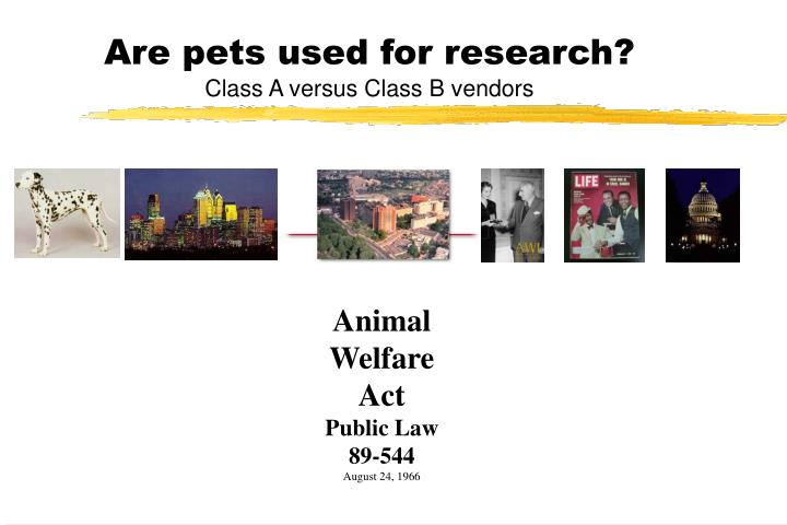 Are pets used for research?