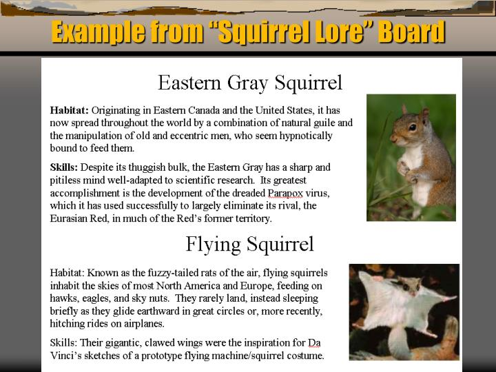 "Example from ""Squirrel Lore"" Board"