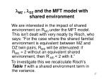 mz dz and the mft model with shared environment