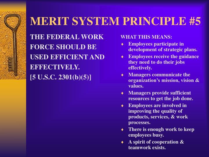 ppt - merit system principles powerpoint presentation