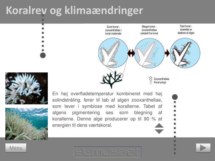 Koralrev og klimaændringer