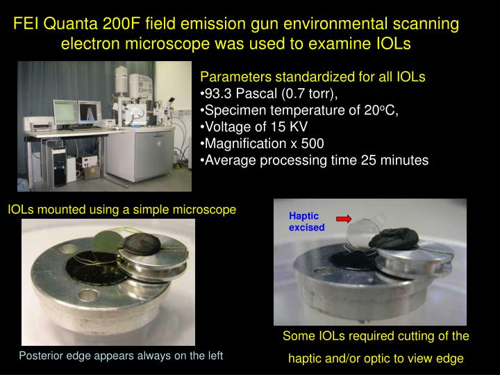 FEI Quanta 200F field emission gun environmental scanning electron microscope was used to examine IOLs