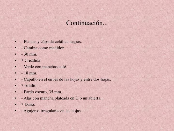 Continuación...