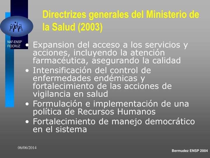 Directrizes generales del Ministerio de la Salud (2003)