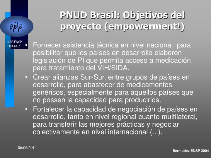 PNUD Brasil: Objetivos del proyecto (empowerment!)