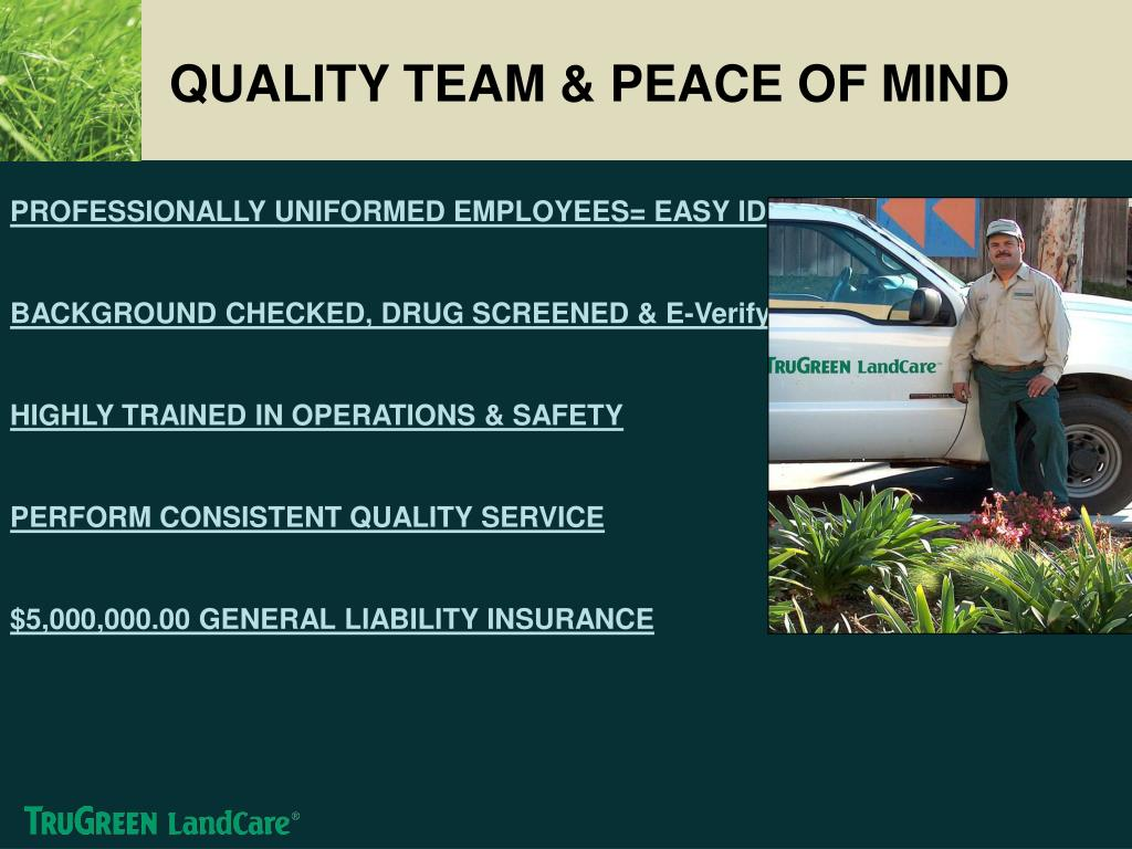 QUALITY TEAM & PEACE OF MIND