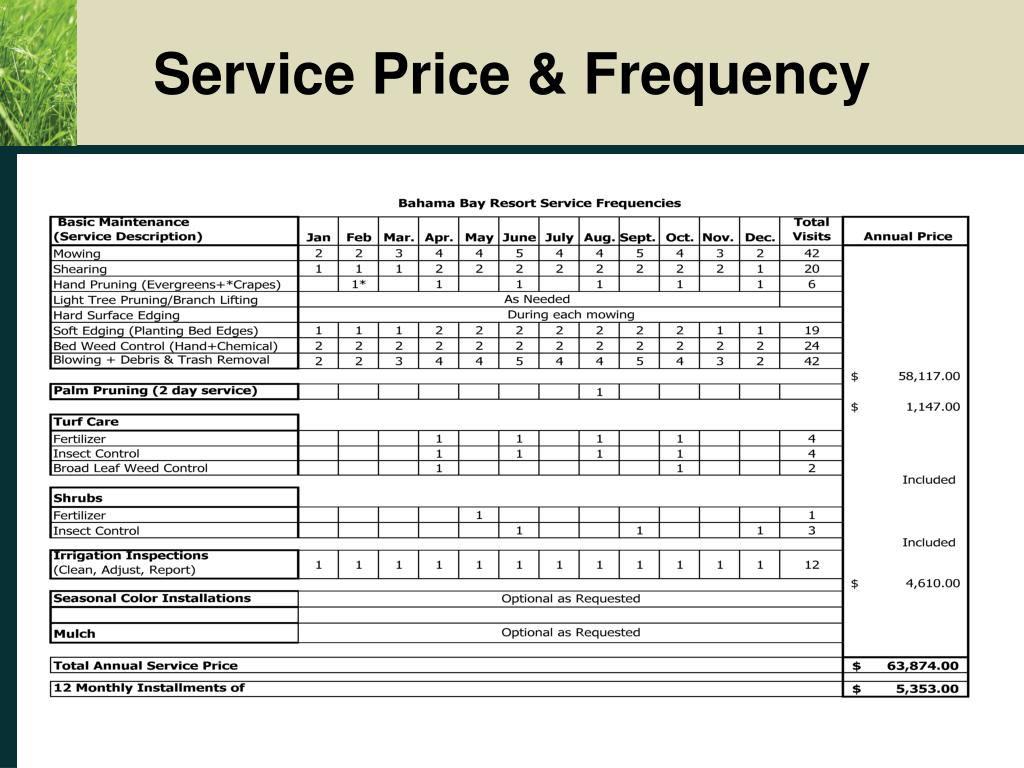 Service Price & Frequency