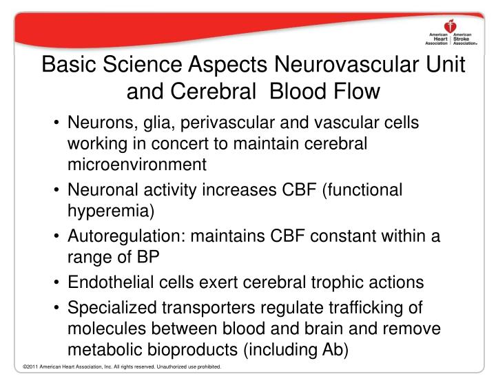 Basic Science Aspects Neurovascular Unit and Cerebral  Blood Flow