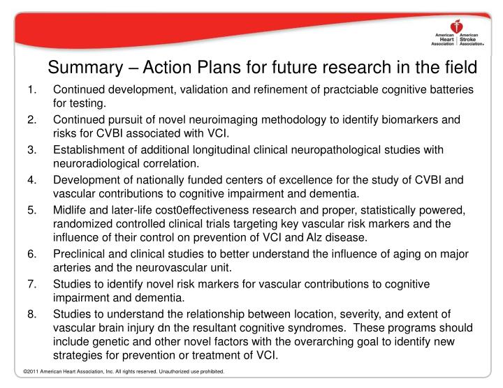 Summary – Action Plans for future research in the field