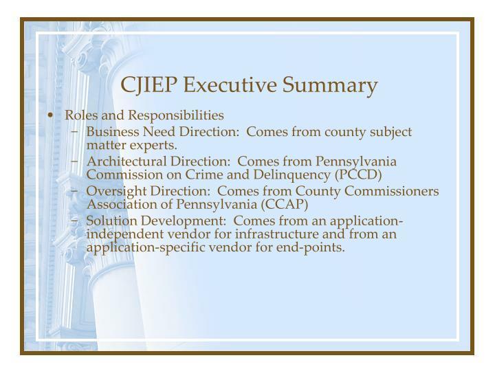 CJIEP Executive Summary