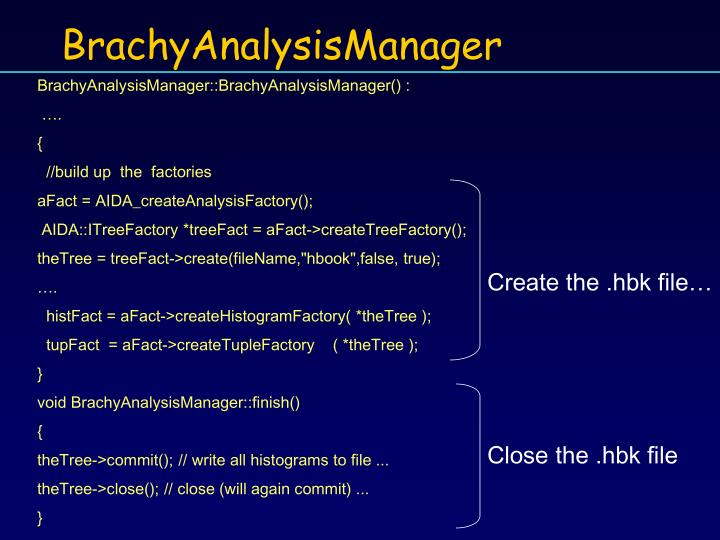 BrachyAnalysisManager