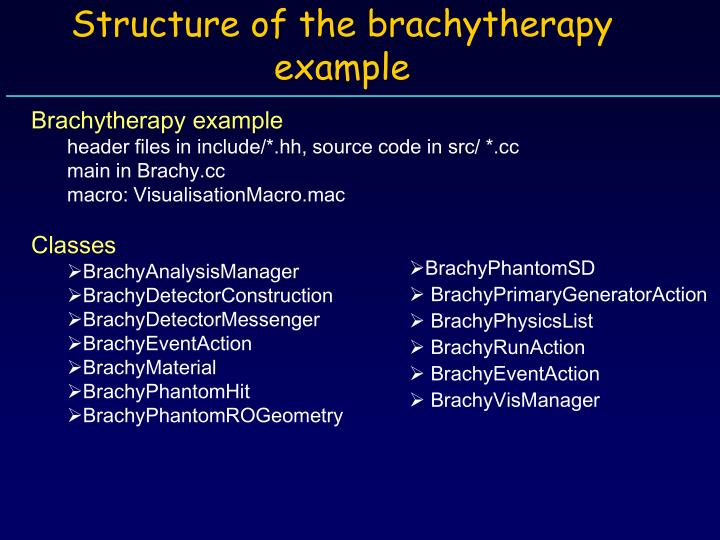 Structure of the brachytherapy example