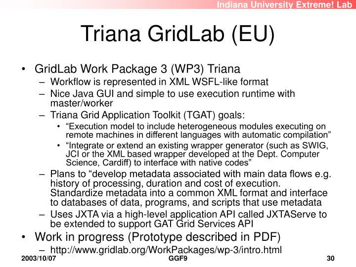 Triana GridLab (EU)