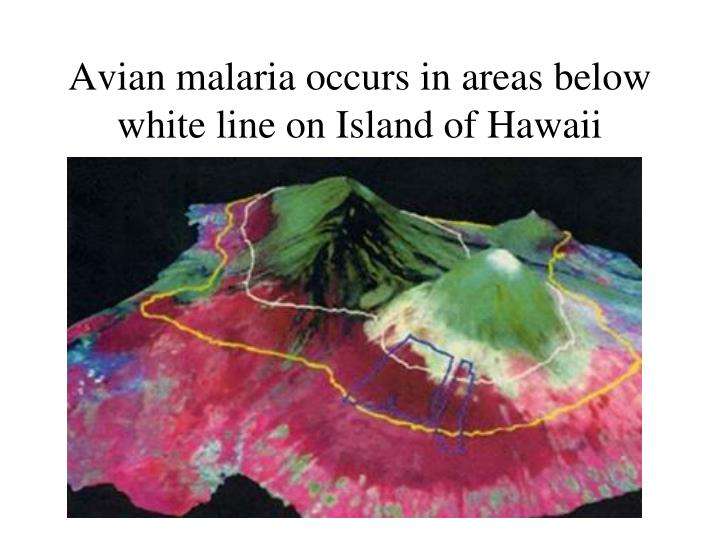 Avian malaria occurs in areas below white line on Island of Hawaii