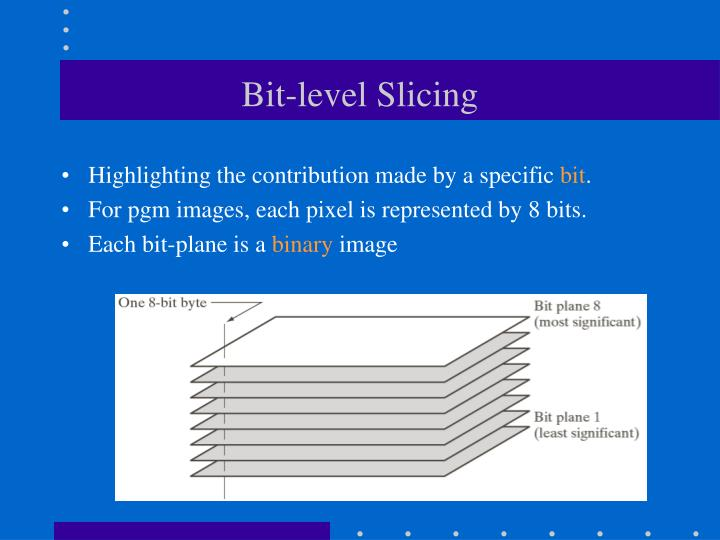Bit-level Slicing