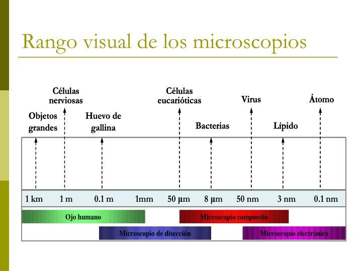 Rango visual de los microscopios